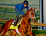 LOUISVILLE, KY - APRIL 30: Vino Rosso, trained by Todd Pletcher, exercises in preparation for the Kentucky Derby at Churchill Downs on April 30, 2018 in Louisville, Kentucky. (Photo by John Voorhees/Eclipse Sportswire/Getty Images)