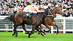 Black Caviar (no. 11), ridden by Luke Nolen and trained by Peter Moody, wins the group 1 Diamond Jubilee Stakes for three year olds and upward on June 23, 2012 at Ascot Racecourse in Ascot, England.  (Bob Mayberger/Eclipse Sportswire)