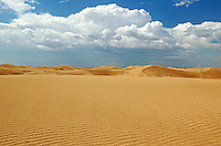 Imperial Sand Dunes Recreation Area, Southern California