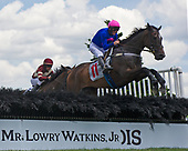 2nd Green Pastures Novice Stakes - Chief Justice