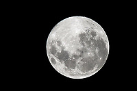 PORTO ALEGRE, RS, 27.04.2021 - CLIMA - TEMPO - A super lua rosa, na noite de outono dos gaúchos, em Porto Alegre, nesta quarta-feira (27).