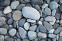 Pebbles on rocky shore, Isle of Mull, Scotland, UK.