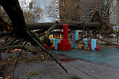 New York, New York.October 30, 2012..A massive tree sit a top a childen's playground near Battery Park  in Lover Manhattan after Hurricane Sandy pounded the north eastern US.