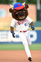 Buffalo Bisons mascot Buster T. Bison runs the bases for an on field promotion during a game against the Durham Bulls on July 10, 2014 at Coca-Cola Field in Buffalo, New  York.  Durham defeated Buffalo 3-2.  (Mike Janes/Four Seam Images)