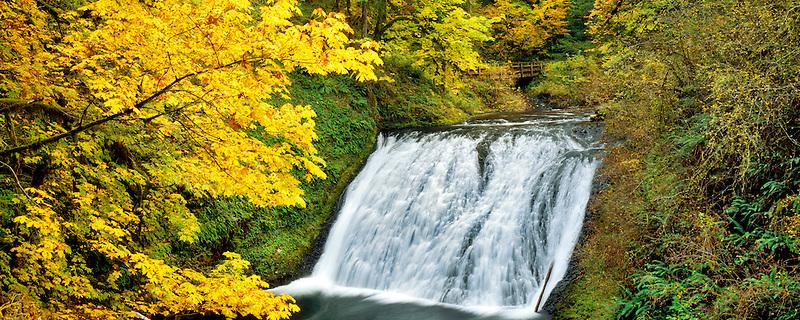 Lower North Falls. Silver Falls State Park. Oregon