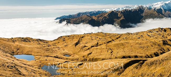 Views along alpine ridges with tarns. Tasman Sea under clouds, Westland Tai Poutini National Park, UNESCO World Heritage Area, West Coast, New Zealand, NZ