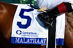 April 03, 2021: Malathaat #5 ridden by Joel Rosario wins the Ashland Stakes (Grade 1) on Blue Grass Stakes Day at Keeneland Race Course in Lexington, Kentucky on April 03, 2021. Jessica Morgan/Eclipse Sportswire/CSM