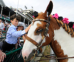 John R. Velasquez's son Michael Patrick pets an outriders pony before his father won 137th running of the Kentucky Derby at Churchill Downs in Louisville, Kentucky on May 7, 2011 aboard Animal Kingdom.