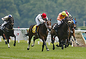 Barry Storm wins on the flat at Fair Hill in 2007