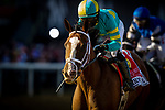 MAY 14, 2021: Army Wife with Joel Rosario aboard wins the Black Eyed Susan Stakes at Pimlico Racecourse in Baltimore, Maryland on May 14, 2021. EversEclipse Sportswire/CSM