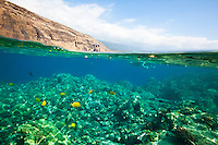 A snorkeler's view of people enjoying the warm waters of Kealakekua Bay, Big Island
