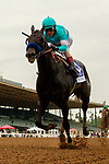"""ARCADIA, CA  SEPTEMBER 27: #3 Eight Rings, ridden by John Velazquez, all alone as he wins the American Pharoah Stakes (Grade 1) """"Win and You're In Breeders' Cup Juvenile Division"""" on September 27, 2019 at Santa Anita Park in Arcadia, CA.   (Photo by Casey Phillips/Eclipse Sportswire/CSM)"""