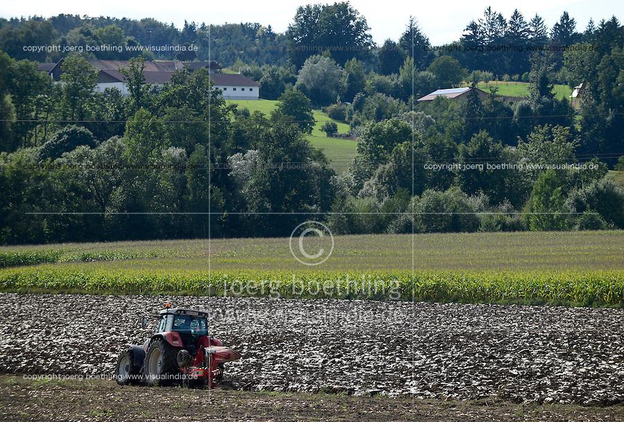 Austria Styria, cultivation of pumpkin, the seeds are used for processing of pumpkin seed oil / Oesterreich Steiermark, Anbau von Kuerbis und Verarbeitung zu Kuerbiskernoel, Unterpfluegen des Kuerbis Fruchtfleisch nach der Ernte