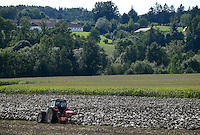Austria Styria, cultivation of pumpkin, the seeds are used for processing of pumpkin seed oil / Oesterreich Steiermark, Anbau von Kuerbis und Verarbeitung zu Kuerbiskernoel, Unterpfluegen des Kuerbis Fruchtfleisch nach der Ernte