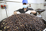 Palestinian men work at a coffee factory in Gaza city on October 6, 2021. 6 tons of coffee are consumed in Gaza strip daily. More than six different companies compete in the coffee production business in Gaza. The increasing consumption of coffee in Gaza to the absence of other types of beverages and notes that there is a popular belief that coffee should be accompanied by a cigarette. It is difficult to enter a house or office in the Gaza Strip without drinking a cup of coffee, as is the case with tea in Egypt. In Gaza, coffee is rarely taken with sugar or milk. Photo by Ashraf Amra