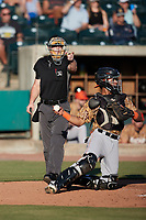 Home plate umpire Matt Blackborow asks for help on a check swing during the Low-A East Championship game between the Down East Wood Ducks and the Charleston RiverDogs at Joseph P. Riley, Jr. Park on September 26, 2021 in Charleston, South Carolina. (Brian Westerholt/Four Seam Images)
