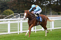 Winner of The PKF Francis Clark British EBF Novice Stakes (Plus 10) (Div 2 The Rosstafarian ridden by James Doyle and trained by Hugo Palmer  during Horse Racing at Salisbury Racecourse on 1st October 2020