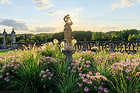 France,  Indre-et-Loire (37), Chançay, jardins du château de Valmer, terrasse des fontaines florentines, bacchante entourée de cléomes et graminées (Pennisetum)