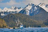 Cape purse seiner Island Pride prepares for the 2006 Sitka Sac Roe Herring Fishery opener in Sitka Sound, southeast, Alaska.