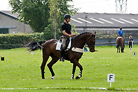 AUS-Christopher Burton (GRAF LIBERTY) 2012 IRL-Tattersalls International Horse Trial: Wednesday - Familiarisation & First Horse Inspection-CCI*