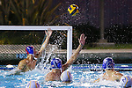 2013 boys water polo: Los Altos High School