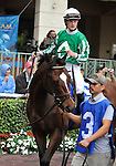 30 January 2009: Capt. Candyman Can in the paddock, with Julien Leparoux in the saddle, before winning the 53rd running of the Grade 2 Hutcheson Stakes for three-year-olds at Gulfstream Park in Hallandale, Florida.