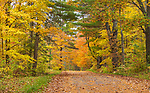 Autumn road in northern Wisconsin.