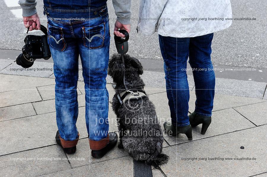 GERMANY, Hamburg, dogs