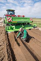Checking tuber spacing & depth - Lincolnshire; April