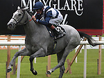 2012.09.09 - Horse Racing - The Curragh Racecourse - Moyglare Stud Stakes.The Richard Hannon  trained Sky Lantern with jockey Richard Hughes aboard win The Moyglare Stud Stakes at The Curragh Racecourse in Kildare, Ireland