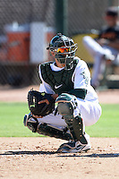 Oakland Athletics catcher Iolana Akau (33) during an instructional league game against the San Francisco Giants on September 27, 2013 at Papago Park Baseball Complex in Phoenix, Arizona.  (Mike Janes/Four Seam Images)