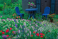 Old fashioned cottage garden with shed, walkway, and blue painted wicker chairs with matching table topped with blooming larkspur