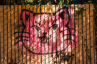 A spray-painted pink kitty graffiti adorns a fence on a street leading to a  neighborhood park.