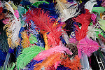 Rainbow Feather, Las Vegas, Nevada