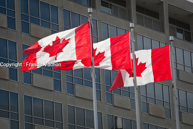 Canadian flags flies in Ottawa Wednesday September 29, 2010.<br /> <br /> PHOTO :  Francis Vachon - Agence Quebec Presse