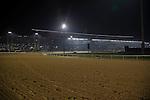 MEYDAN,DUBAI-MARCH 25:  Stand before sunrise at Meydan Racecourse on March 25,2016 in Meydan,Dubai (Photo by Kaz Ishida)