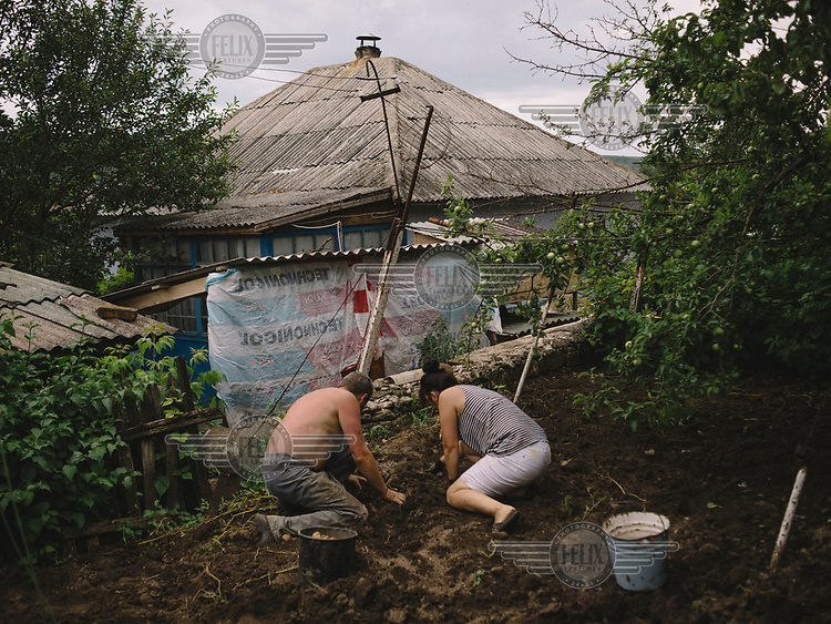 Angela, and her husband Valera, plant potatoes at her grandmother's house.