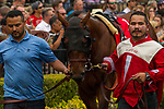 DEL MAR, CA. AUGUST 12:  #1 Run Away ridden by Flavien Prat, in the paddock before the Best Pal Stakes (Grade ll) on August 12, 2017, at Del Mar Thoroughbred Club in Del Mar, CA.(Photo by Casey Phillips/Eclipse Sportswire/Getty )