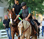 LOUISVILLE, KY --MAY 14: Justify goes to the track at Churchill Downs, Louisville, Kentucky with exercise rider Humberto Gomez and assistant trainer Jimmy Barnes in preparation for the Preakness Stakes in Baltimore, Maryland.  (Photo by Mary M. Meek/Eclipse Sportswire/Getty Images)