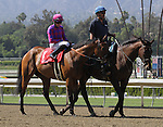 """June 14, 2014: Obviously (IRE) with Joe Talamo aboard wins the Grade I """"Win and You're In"""" Shoemaker Mile at Santa Anita Park in Arcadia, California. Zoe Metz/ESW/CSM"""