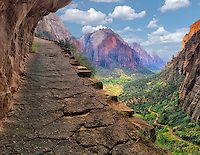 View of Zion National Park from trail in high country, Utah<br /> <br /> C00471D-11