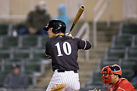 Mitch Roman (10) of the Kannapolis Intimidators at bat against the Lakewood BlueClaws at Kannapolis Intimidators Stadium on April 6, 2017 in Kannapolis, North Carolina.  The BlueClaws defeated the Intimidators 7-5.  (Brian Westerholt/Four Seam Images)