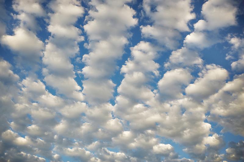 Clouds preceeding a large thunderstorm. Wilsonville, Oregon