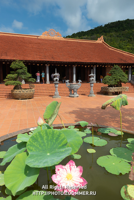 Lotus Flower in Ho Quoc Buddhist Temple, Phu Quoc, Vietnam