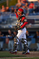 Batavia Muckdogs catcher Pablo Garcia (7) signals two outs during a game against the West Virginia Black Bears on June 29, 2016 at Dwyer Stadium in Batavia, New York.  West Virginia defeated Batavia 9-4.  (Mike Janes/Four Seam Images)