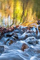 Autumn Color and Cascade