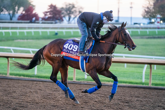 November 5, 2020: Mucho Unusual, trained by trainer Tim Yakteen, exercises in preparation for the Breeders' Cup Filly & Mare Turf at Keeneland Racetrack in Lexington, Kentucky on November 5, 2020. Scott Serio/Eclipse Sportswire/Breeders Cup/CSM