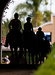 The horses come onto the track for the San Diego Handicap at Del Mar, in Del Mar Ca, July 25, 2020. (Photo: Alex Evers)