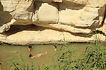 Ein Yorkeam in the Negev