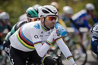 hydration time for Alejandro Valverde (ESP/Movistar)<br /> <br /> 74th Dwars door Vlaanderen 2019 (1.UWT)<br /> One day race from Roeselare to Waregem (BEL/183km)<br /> <br /> ©kramon